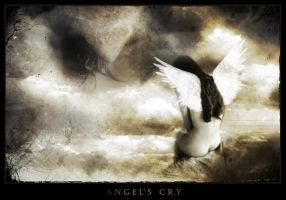 Angels Cry by ladymorgana