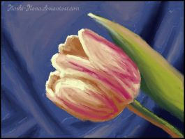 NAA: Painting lessons 1 - Tulip (#2) by Hoshi-Hana