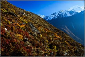 Colors of the high Himalayas by yuvi2