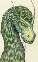 Eragon - The Green Dragon by Sternenmaskerade