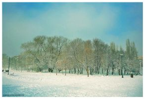 another winter day... by Iulian-dA-gallery