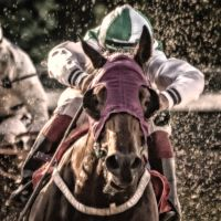 Horseracing -Green by AndersStangl