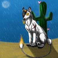 Rain in desert by BullTerrierKa