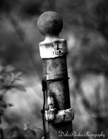 Rusty Post by DalePhotography