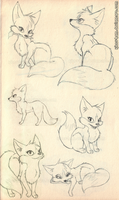 Fox Sketches by Kitty-Ham