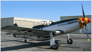 P-51 Mustang by Tomatogrower