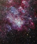 Tarantula nebula by geors