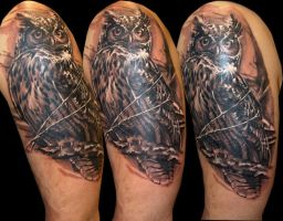 Owl by Zsolt Sarkozi at Dublin Ink by DublinInk