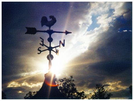 Weathervane by JudeanPeoplesFront