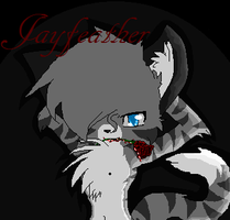 jayfeather is looking good by AmyroseXDSonic