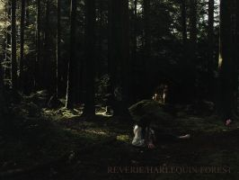Reverie, Harlequin Forest by blade-bunny