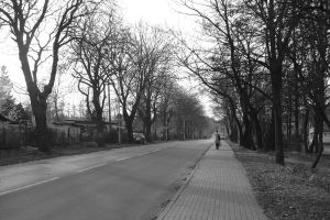 Road to the winter by AnnadeRuyter