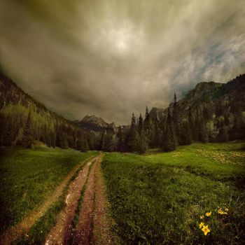 the valley of the small meadow by Alcove