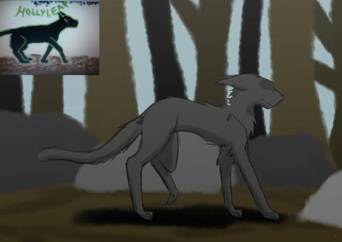 Redraw 2013-2017 Hollyleaf by Morgana-Mikaelson