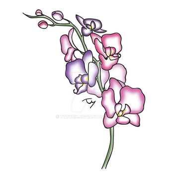 Orchid Quick Draw - Color by tyrynn