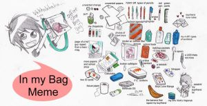 In my Bag Meme by MattxMourning