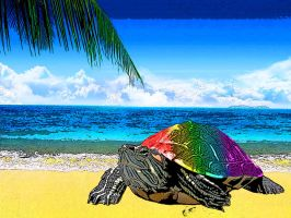 Rainbow Turtle on the Beach by pink121