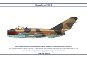 MiG-17 China 2 by WS-Clave