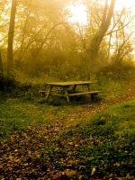 Picnic Table by MadeleineAlana