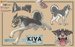 Kiva ref sheet by cloudstar-wolf