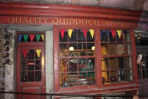 Quality Quidditch Supplies by Skarkdahn