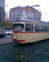 Autumn tramway by mikopol