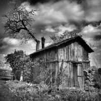 The Potting Shed by PsychoBudgie