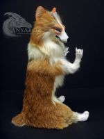 Tufted Corgi Room Guardian by AnyaBoz