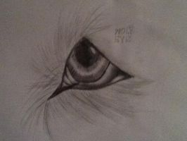 Wolf eye(rough) by darkwateralpha