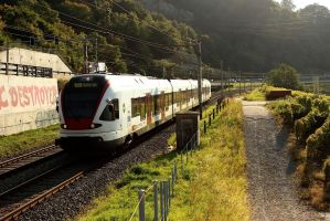 SwissTrain - Lavaux III by Lasonicon