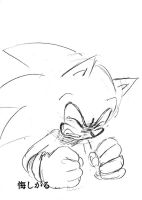 sonic cry 30 vexing by bbpopococo