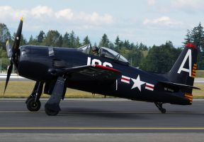 Grumman F8F-2 Bearcat Taxi by shelbs2