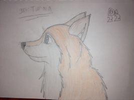 Gift: Tienala  by dogmaster22