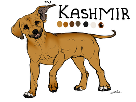 Kashmir Tryout by Serphire