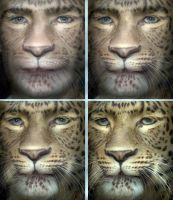 Leopard Face Sequence by oboroten