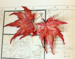 Japanese maple by Svetlana-Eliro