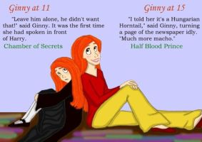Ginny's Transformation by DKCissner
