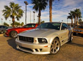 saleen by tobiasth