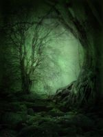 UNRESTRICTED - Mystery Woods Background 03 by frozenstocks