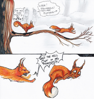 Playing Squirrels by Awiis