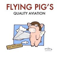 Flying Pig Aviation by elephantblue