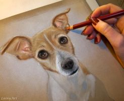 Terrier - Pastel WIP by secrets-of-the-pen