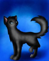 Cinderpelt by AnnMY