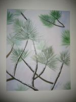 Winter Pine by doughboy2169