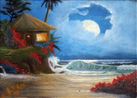 Tropical Hut by imagesource