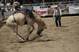 rodeo 4 by xbr0kendevotion