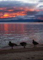 Sunrise Over South Lake Tahoe by inforcer