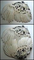 Black and White Rooster Wings by CabinetCuriosities