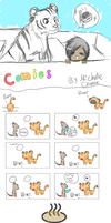 Life of Pi Comics by Sandy-the-echidna