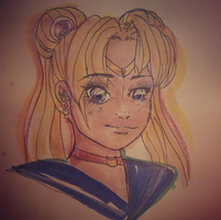 Sailor Moon - Cartoony Style by mollyisacatlady